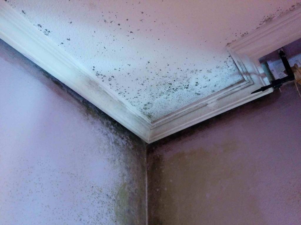 humedad por condensacion en esquinas