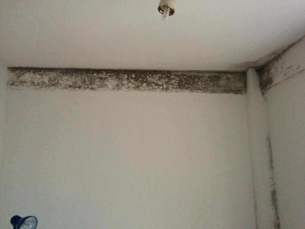 humedad por condensacion en paredes y techos