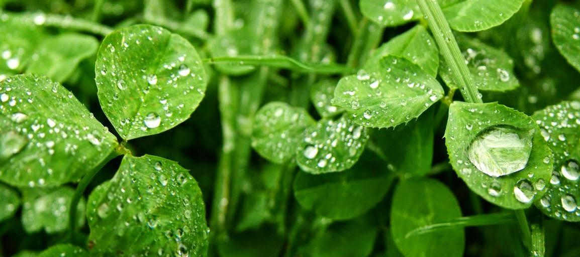 Qu es la humedad por condensaci n explicaci n para profanos - Como evitar la condensacion ...