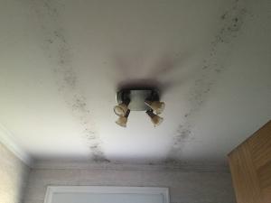 vigas negras en el techo condensación