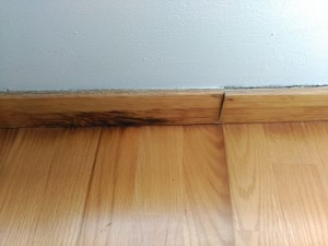 zócalo madera humedad
