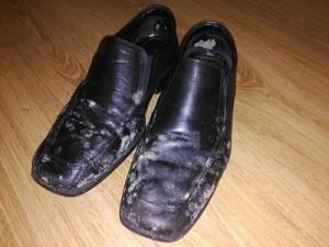 calzado zapatos moho