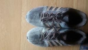 zapatos calzado moho humedad