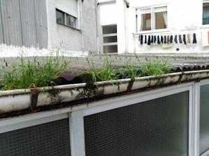 mantenimiento terraza
