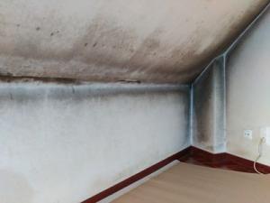 humedad condensación pared