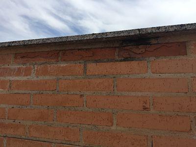fachada ladrillo humedad