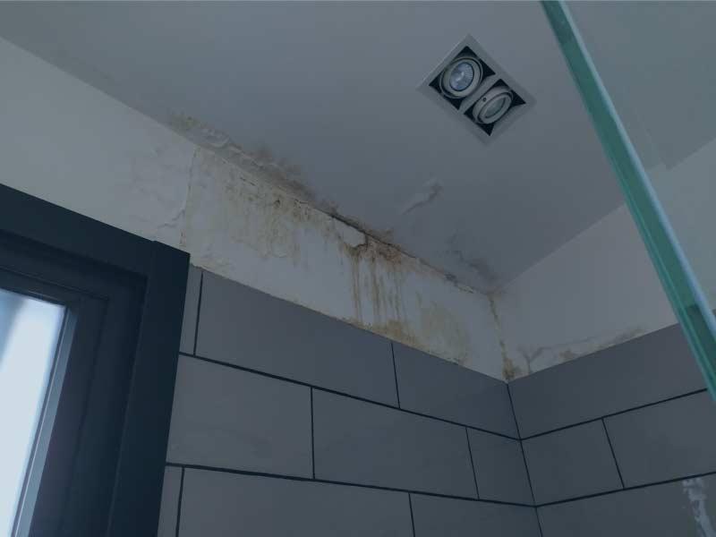 Humedad-por-filtracion-en-paredes-Hume-Ingeniería