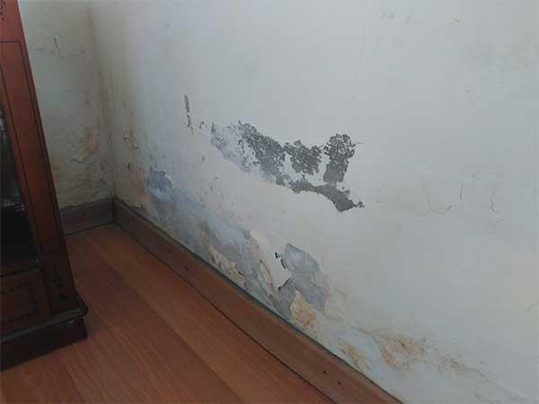 humedades-por-capilaridad-en-paredes-en-Hume-Ingeniería