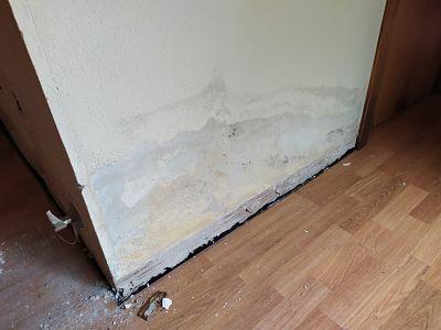 humedad capilaridad pared